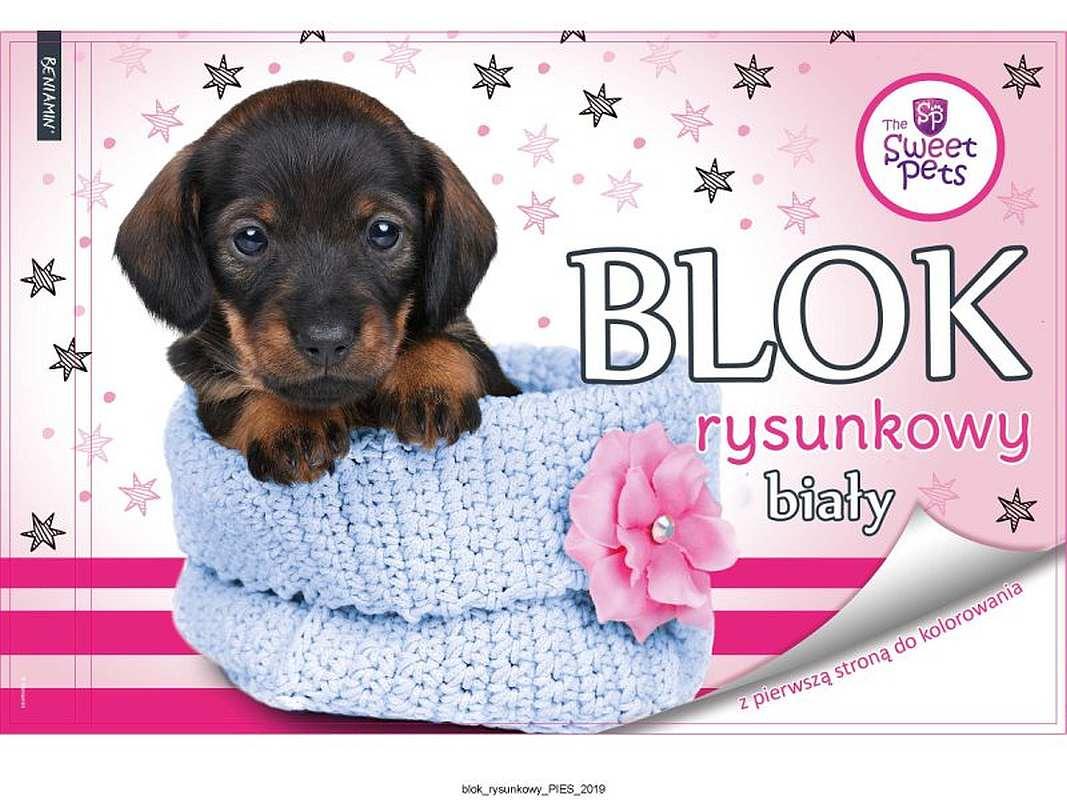 BENIAMIN Blok na kreslenie s omaľovánkou Sweet Pets Psík Papír, 29x21 cm