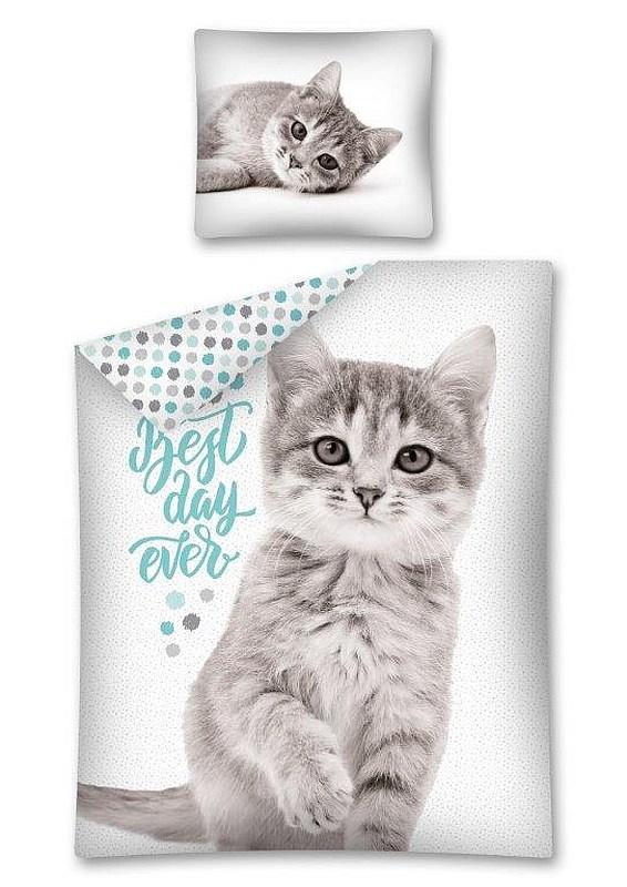 DETEXPOL Obliečky Sweet Animals Mačiatko šedé  Bavlna, 140/200, 70/80 cm