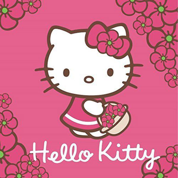 Magický ručník Hello Kitty 30/30