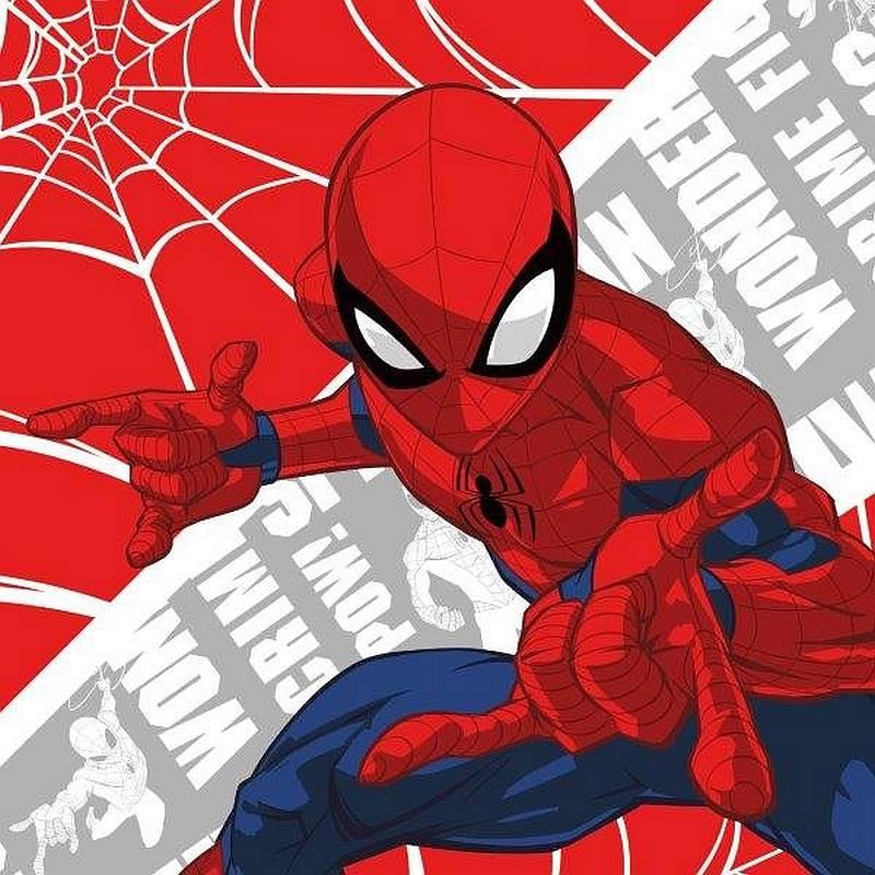 Magický uteráčik Spiderman 30/30