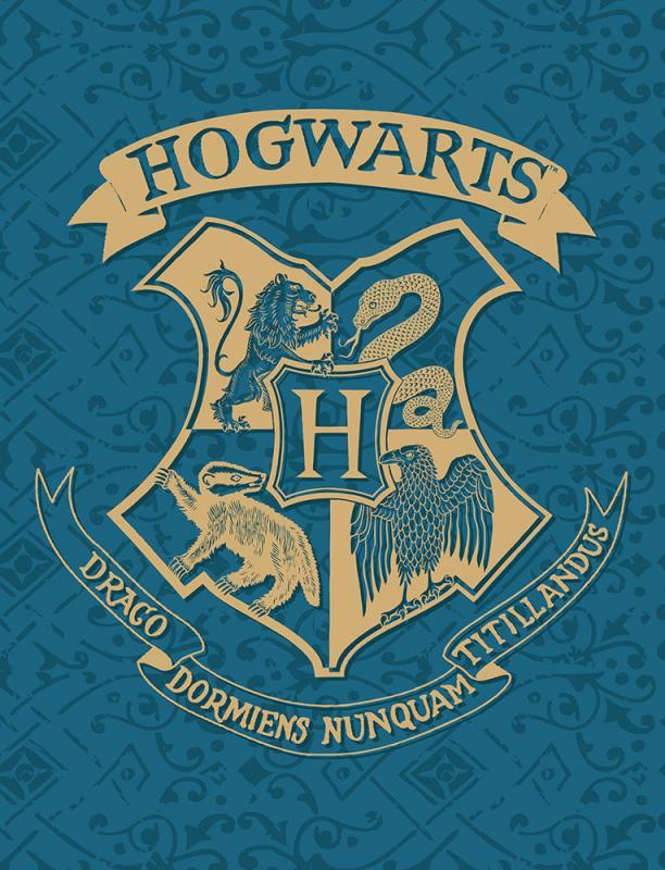 HALANTEX Fleece deka Harry Potter blue  Polyester, 130/170 cm