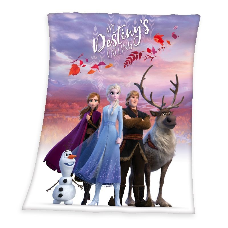 HERDING Soft fleece deka Ľadové Kráľovstvo 2 Believe Polyester, 130/160 cm