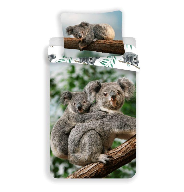 JERRY FABRICS Obliečky Koala  Bavlna, 140/200, 70/90 cm