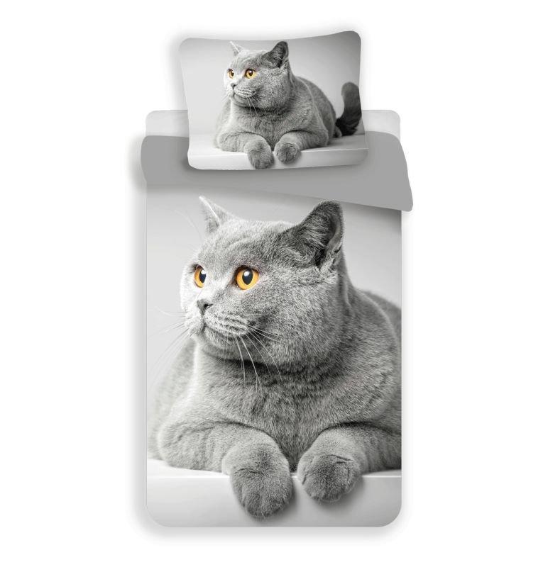 3D Obliečky Grey cat micro 140/200, 70/90